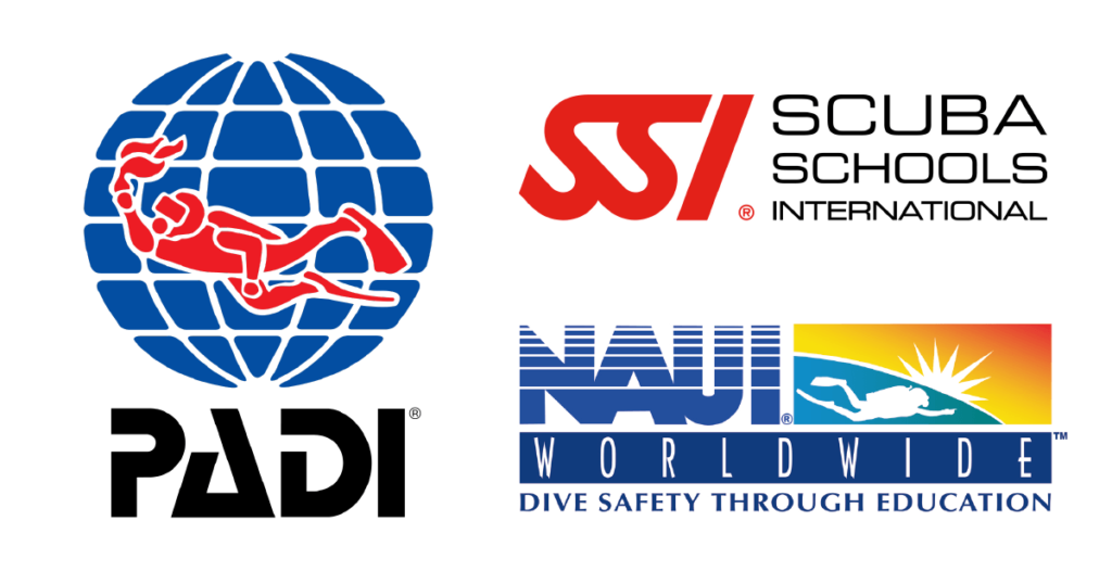 scuba-diving certification-company